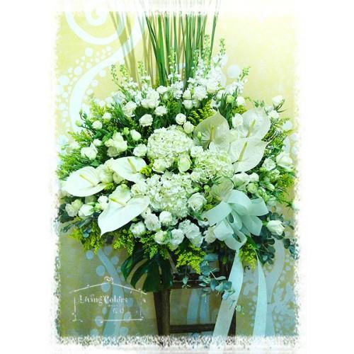 Hydrangea, Anthurium, rose
